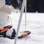 Snowshoe Image 2